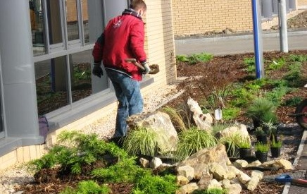 Planting at NEL at East Kilbride, Client Weirs Group
