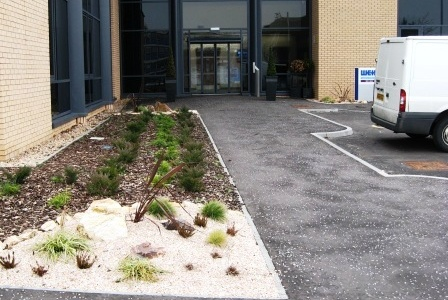 Commercial Soft Landscaping